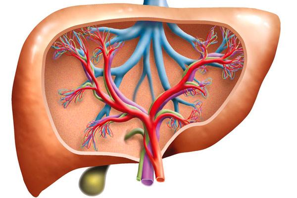 осложнения цирроза печени современные методы лечения