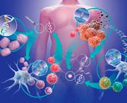 как действует иммунотерапия при меланоме