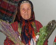 старинные методы лечения травами