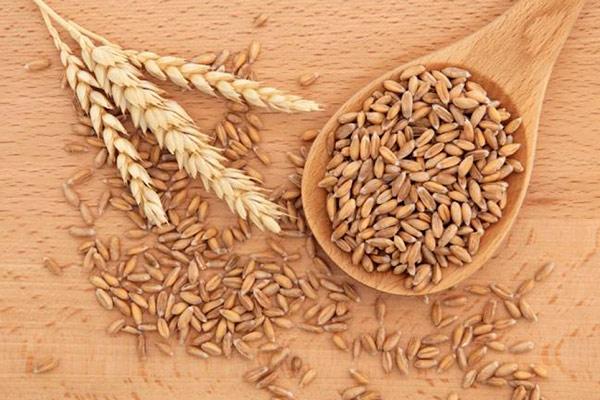 для чего нужна пшеница
