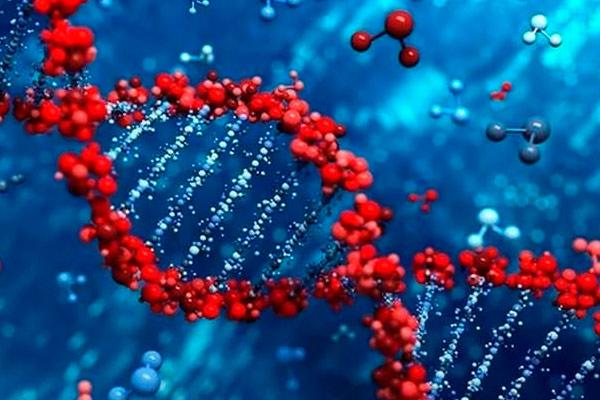 неблагоприятные генетические связи