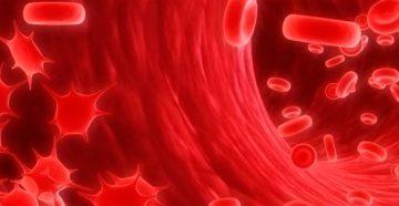 как с помощью анализов определить рак крови