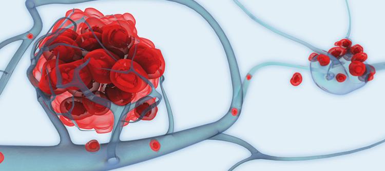 в каких органах синтезируются гормоны либерины статины