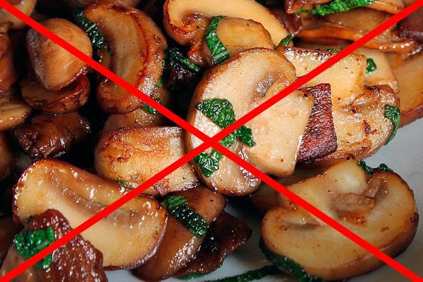 грибы категорически запрещены