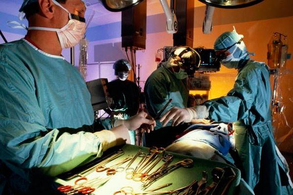проведение хирургической кастрации