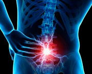 распространение в кости позвоночника