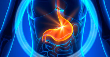 диагностика карциномы желудка на узи
