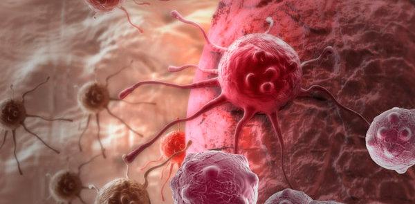 сколько живут при раке